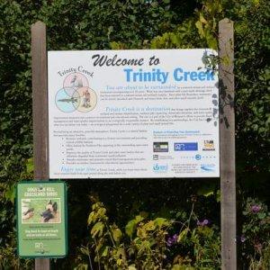 trinity-creek-wetland-habitat